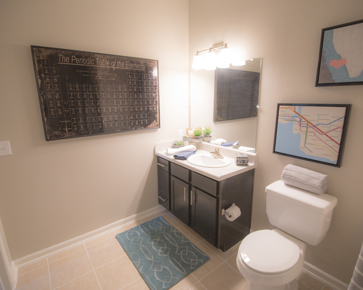 Bathroom at Goodnight Commons with a dark brown vanity, tile flooring with a blue rug, and an image of the Periodic Table of the Elements on the wall