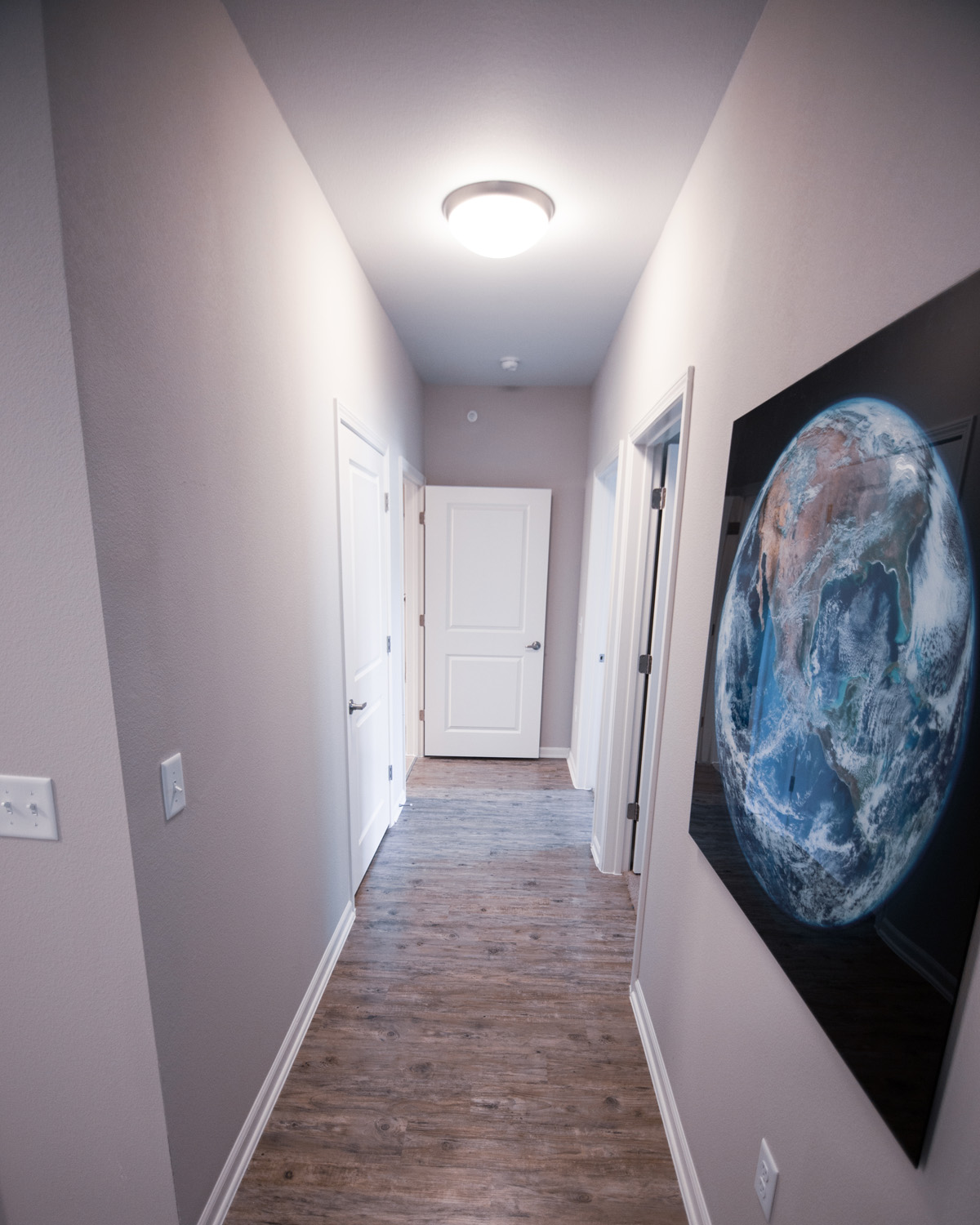 Goodnight Commons apartment hallway with hardwood flooring and grey walls